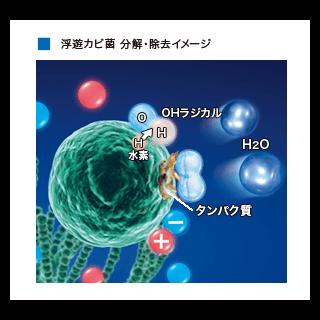 浮遊カビ菌を除菌