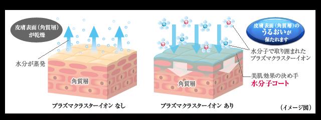 プラズマクラスターイオンの肌保湿メカニズム