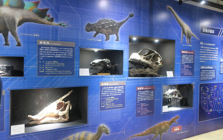 恐竜研究室02