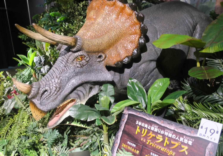 恐竜の森02