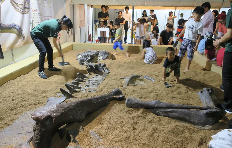 恐竜FUNランド01