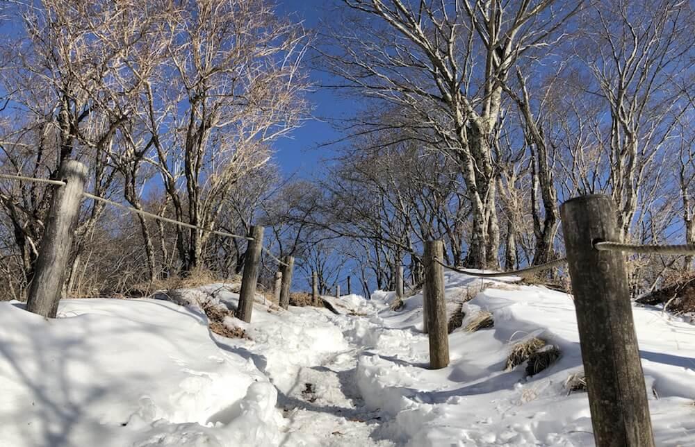完全雪景色
