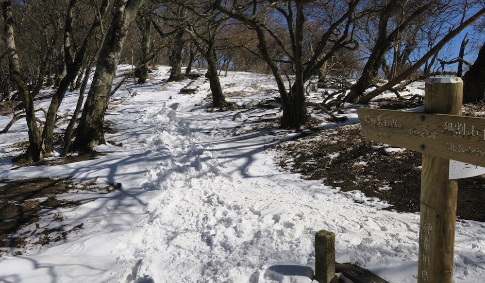 塔ノ岳への道1